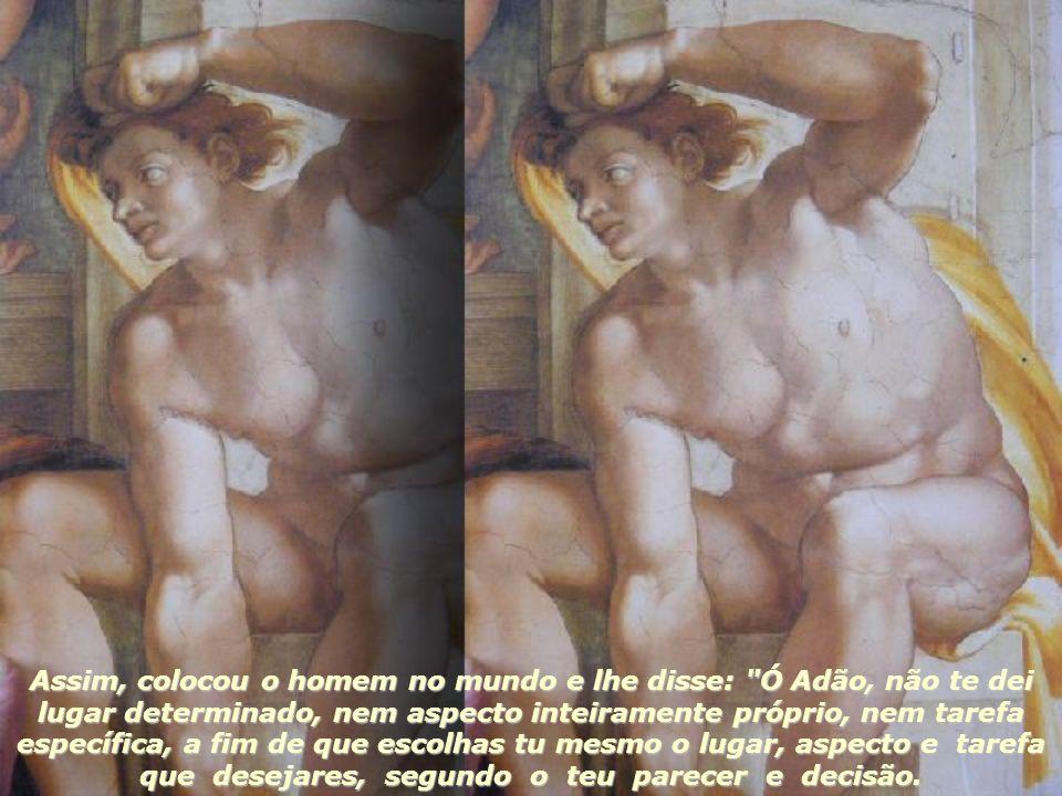 Mas não teria sido digno de Deus não se superar, como se fosse inábil, na sua obra.