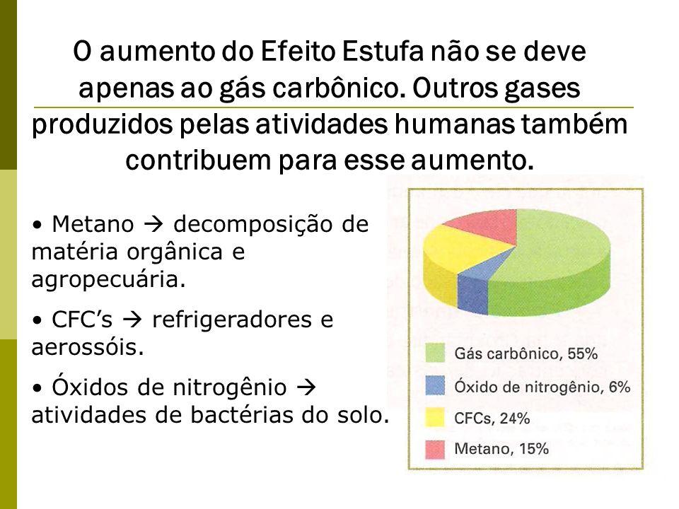 O aumento do Efeito Estufa não se deve apenas ao gás carbônico. Outros gases produzidos pelas atividades humanas também contribuem para esse aumento.