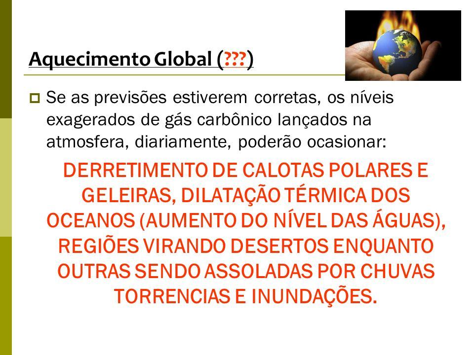 Aquecimento Global (???) Se as previsões estiverem corretas, os níveis exagerados de gás carbônico lançados na atmosfera, diariamente, poderão ocasion