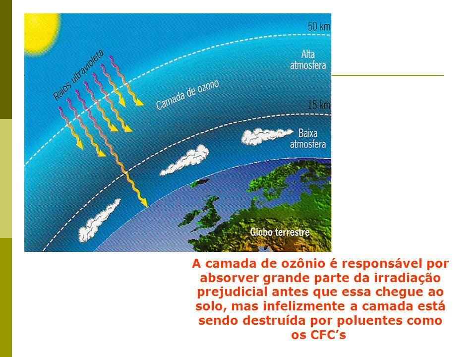 A camada de ozônio é responsável por absorver grande parte da irradiação prejudicial antes que essa chegue ao solo, mas infelizmente a camada está sen