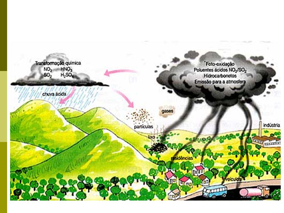 Consequências da Chuva Ácida: Destruição de florestas, pois contamina as águas dos lagos e provoca aumento na acidez do solo.