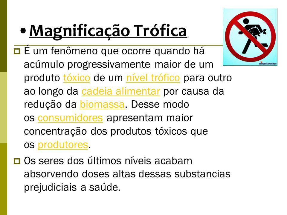 Magnificação Trófica É um fenômeno que ocorre quando há acúmulo progressivamente maior de um produto tóxico de um nível trófico para outro ao longo da