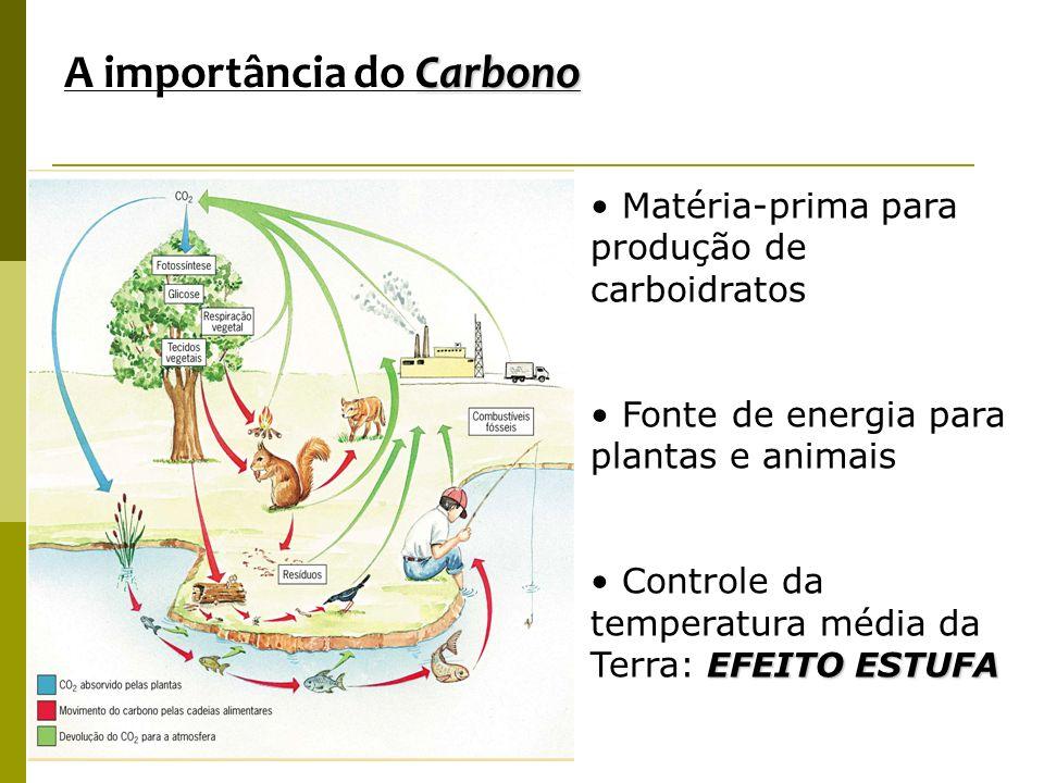 Carbono A importância do Carbono Matéria-prima para produção de carboidratos Fonte de energia para plantas e animais EFEITO ESTUFA Controle da tempera