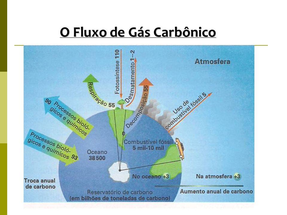 O Fluxo de Gás Carbônico