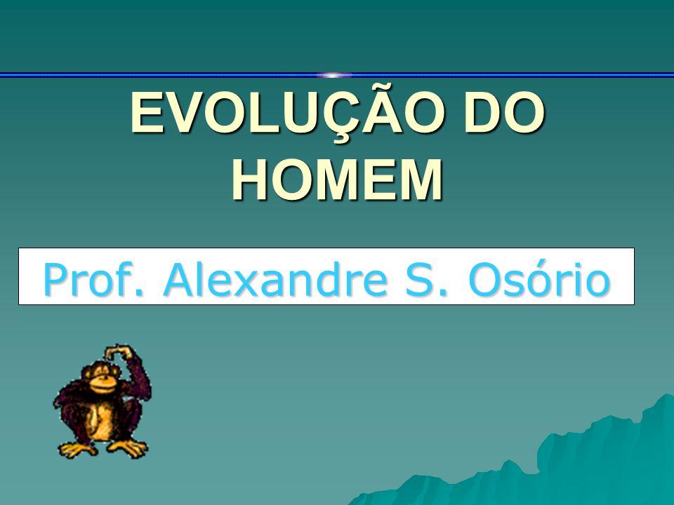 EVOLUÇÃO DO HOMEM Prof. Alexandre S. Osório
