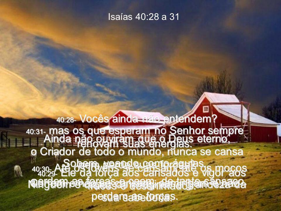 Isaías 40:28 a 31 40:28- Vocês ainda não entendem.