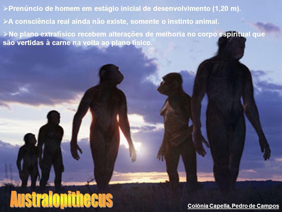 Prenúncio de homem em estágio inicial de desenvolvimento (1,20 m). A consciência real ainda não existe, somente o instinto animal. No plano extrafísic