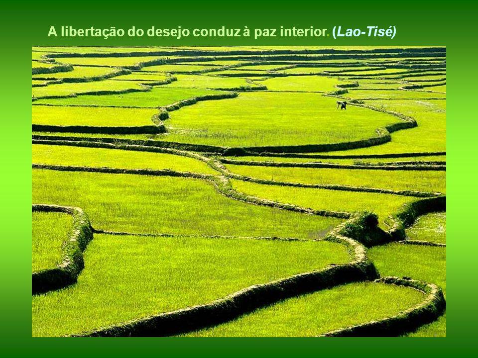 Todo desejo incômodo e inquieto se dissolve no amor da verdadeira filosofia. (LAO-TSÉ )