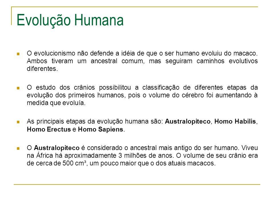 Evolução Humana O evolucionismo não defende a idéia de que o ser humano evoluiu do macaco. Ambos tiveram um ancestral comum, mas seguiram caminhos evo