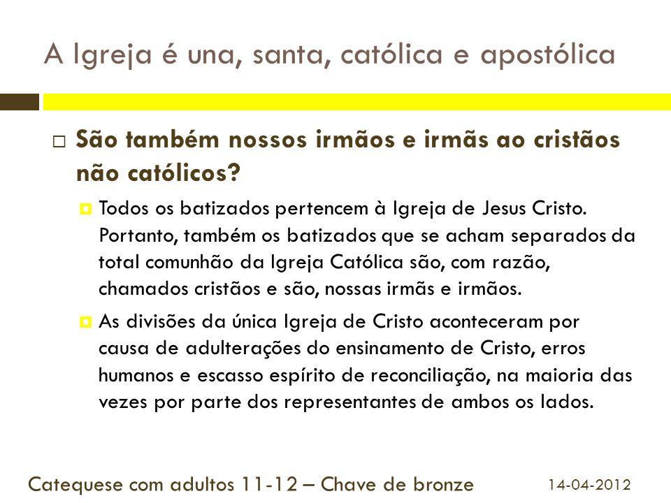 A Igreja é una, santa, católica e apostólica São também nossos irmãos e irmãs ao cristãos não católicos? Todos os batizados pertencem à Igreja de Jesu