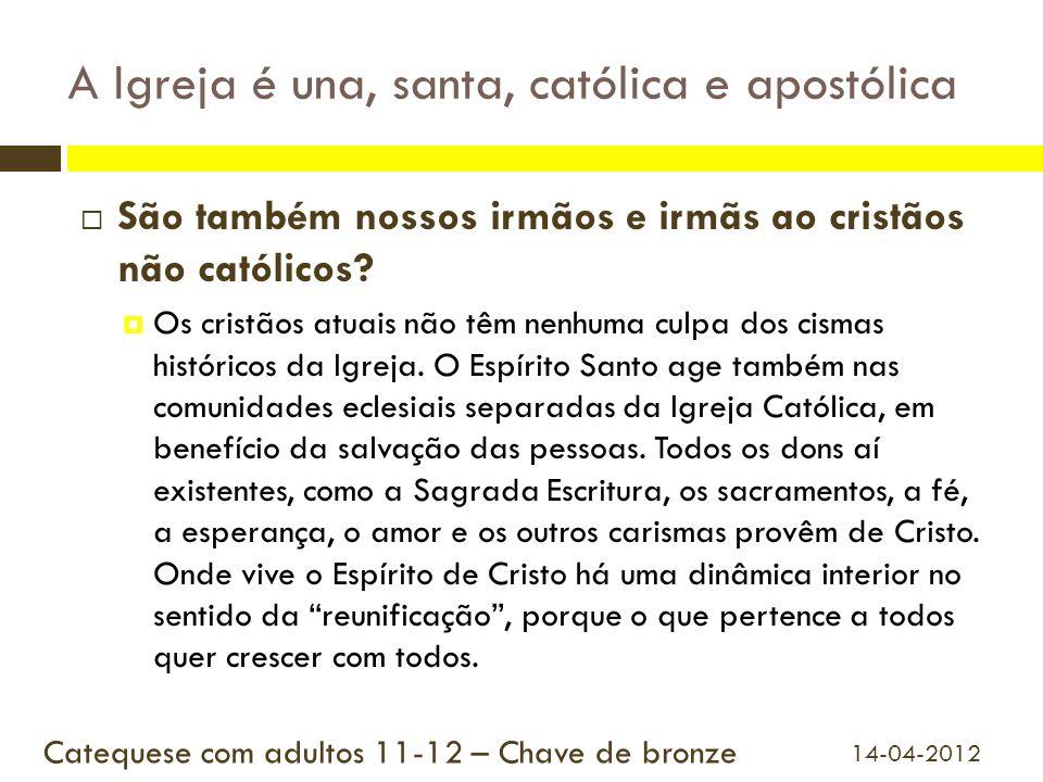 A Igreja é una, santa, católica e apostólica São também nossos irmãos e irmãs ao cristãos não católicos? Os cristãos atuais não têm nenhuma culpa dos