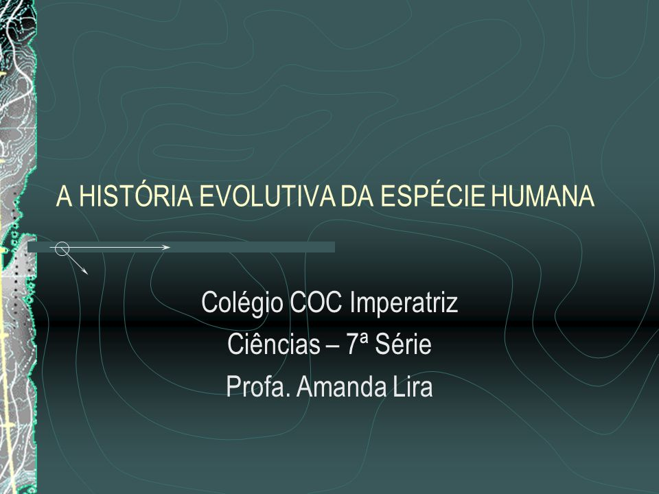 A HISTÓRIA EVOLUTIVA DA ESPÉCIE HUMANA Colégio COC Imperatriz Ciências – 7ª Série Profa.