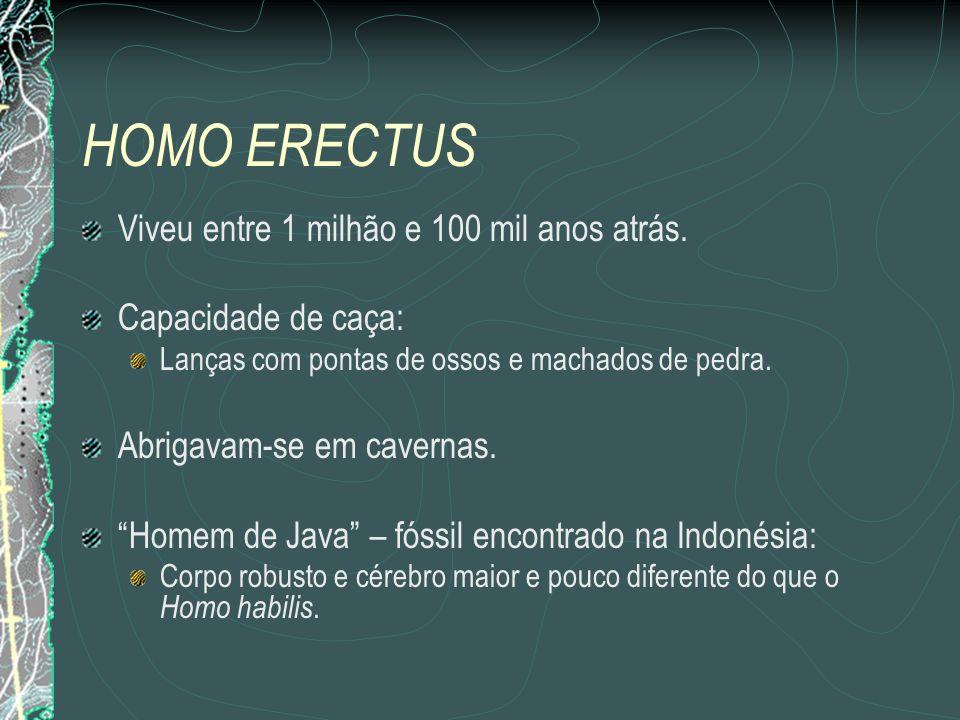 HOMO ERECTUS Viveu entre 1 milhão e 100 mil anos atrás.