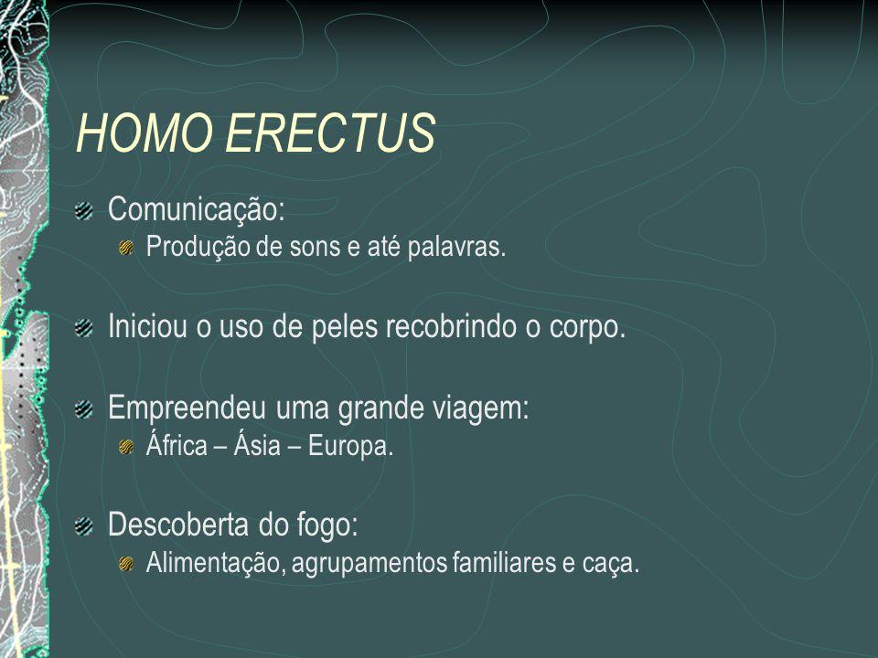 HOMO ERECTUS Comunicação: Produção de sons e até palavras.