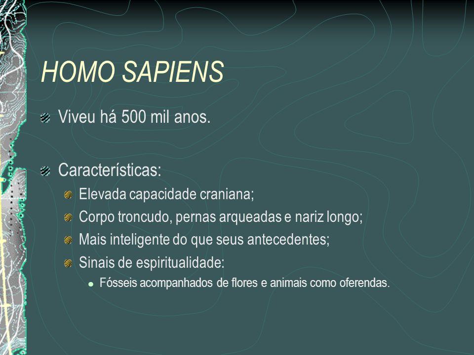 HOMO SAPIENS Viveu há 500 mil anos.