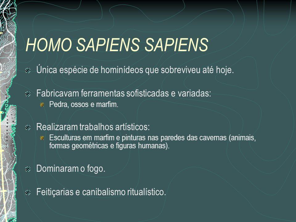 HOMO SAPIENS SAPIENS Única espécie de hominídeos que sobreviveu até hoje.