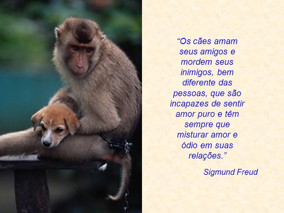 Não há diferenças fundamentais entre o homem e os animais nas suas faculdades mentais...