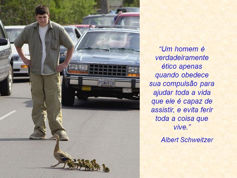 Sri Aurobindo Vida é vida - seja de um gato, cão ou homem. Não há diferença entre um gato e um homem nesse aspecto. A idéia de diferença é uma criação