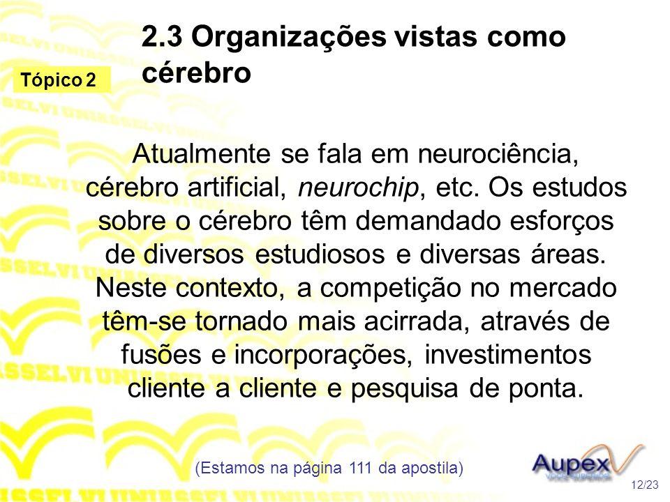 2.3 Organizações vistas como cérebro Atualmente se fala em neurociência, cérebro artificial, neurochip, etc. Os estudos sobre o cérebro têm demandado