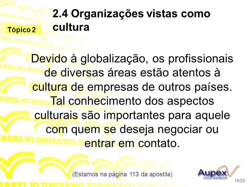 2.4 Organizações vistas como cultura Devido à globalização, os profissionais de diversas áreas estão atentos à cultura de empresas de outros países. T