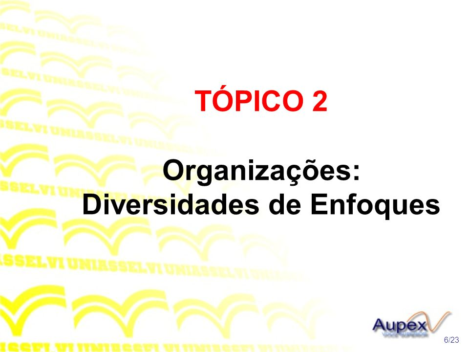 TÓPICO 2 Organizações: Diversidades de Enfoques 6/23