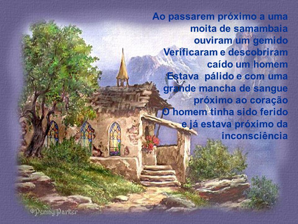 Depois de um dia de caminhada pela mata mestre e discípulo retornavam ao casebre seguindo por uma longa estrada