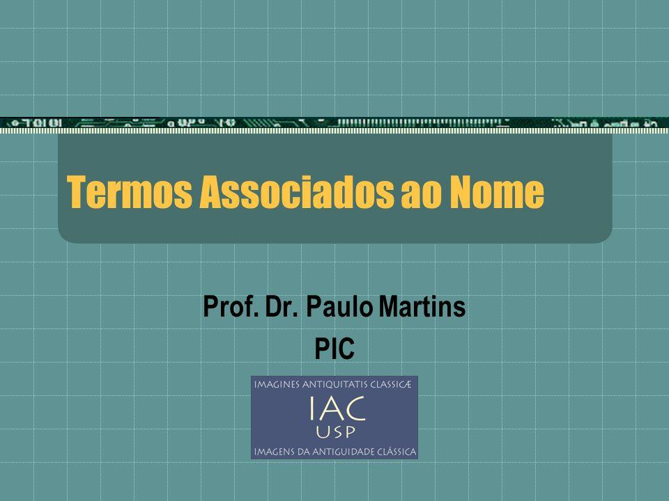 Termos Associados ao Nome Prof. Dr. Paulo Martins PIC