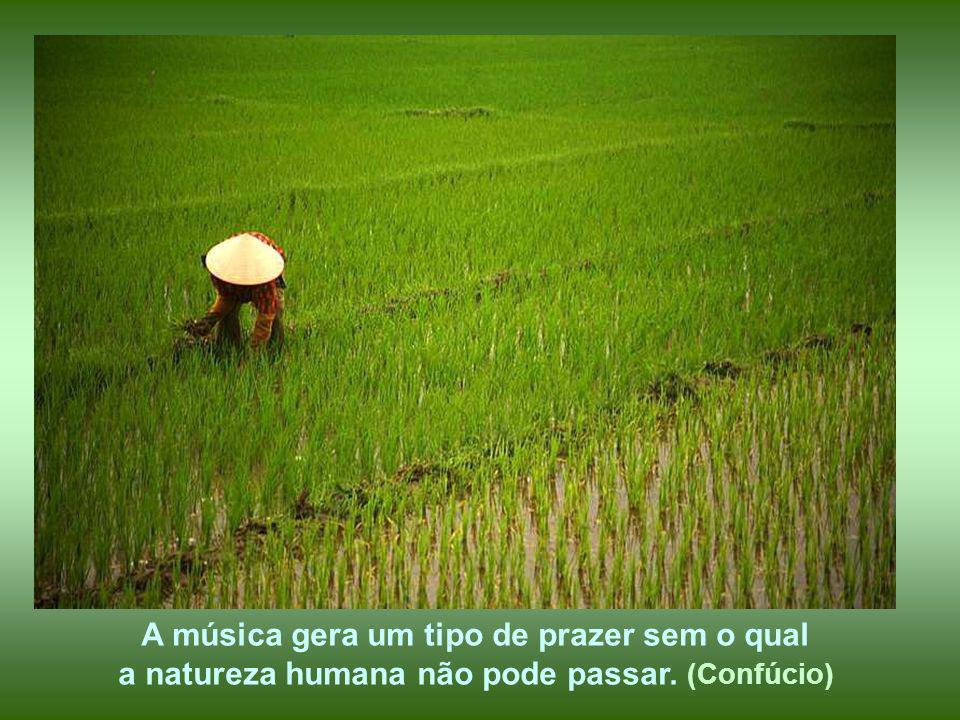 Não são as más ervas que sufocam o grão, é a negligência do cultivador. (Confúcio)