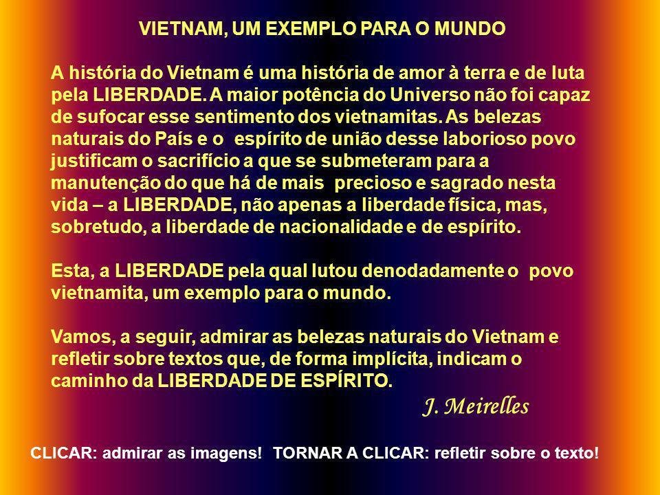VIETNAM, UM EXEMPLO PARA O MUNDO A história do Vietnam é uma história de amor à terra e de luta pela LIBERDADE.