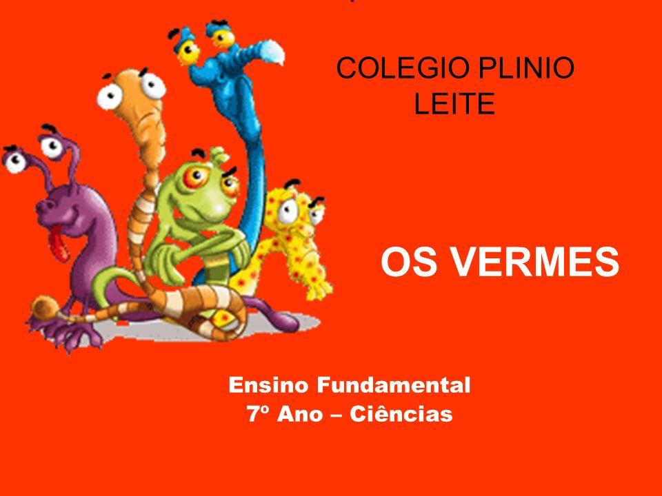 OS VERMES Ensino Fundamental 7º Ano – Ciências COLEGIO PLINIO LEITE
