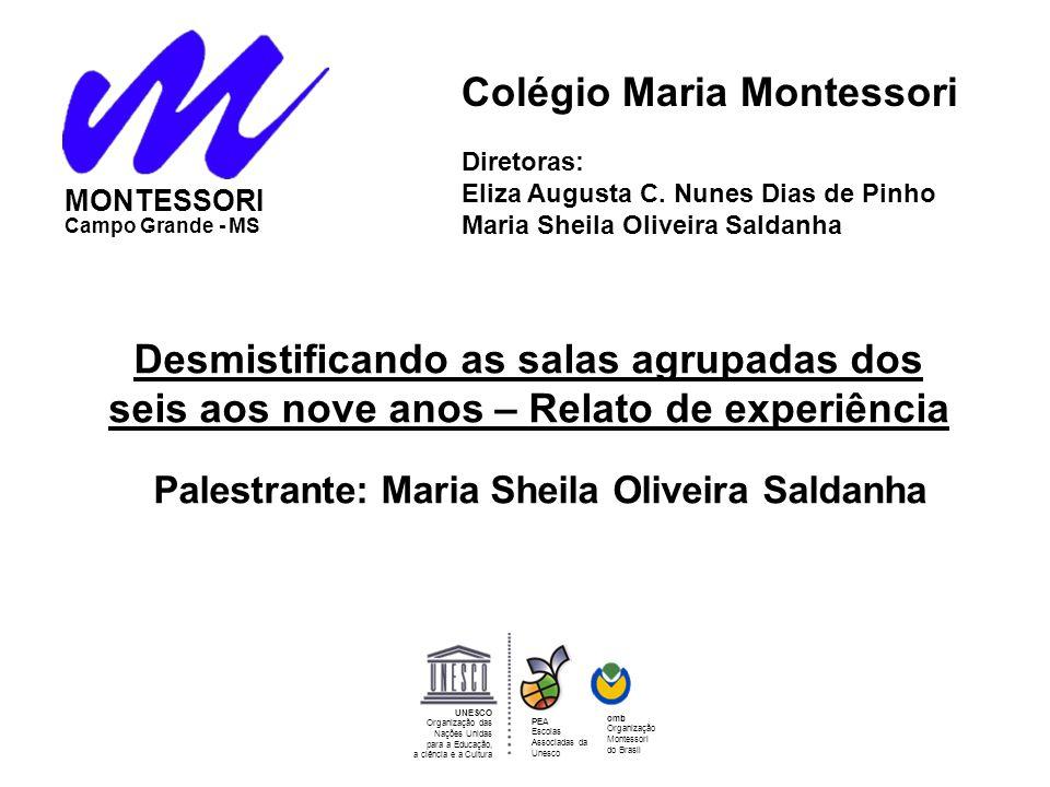 Diretoras:. Eliza Augusta C. Nunes Dias de Pinho Maria Sheila Oliveira Saldanha Colégio Maria Montessori Desmistificando as salas agrupadas dos seis a