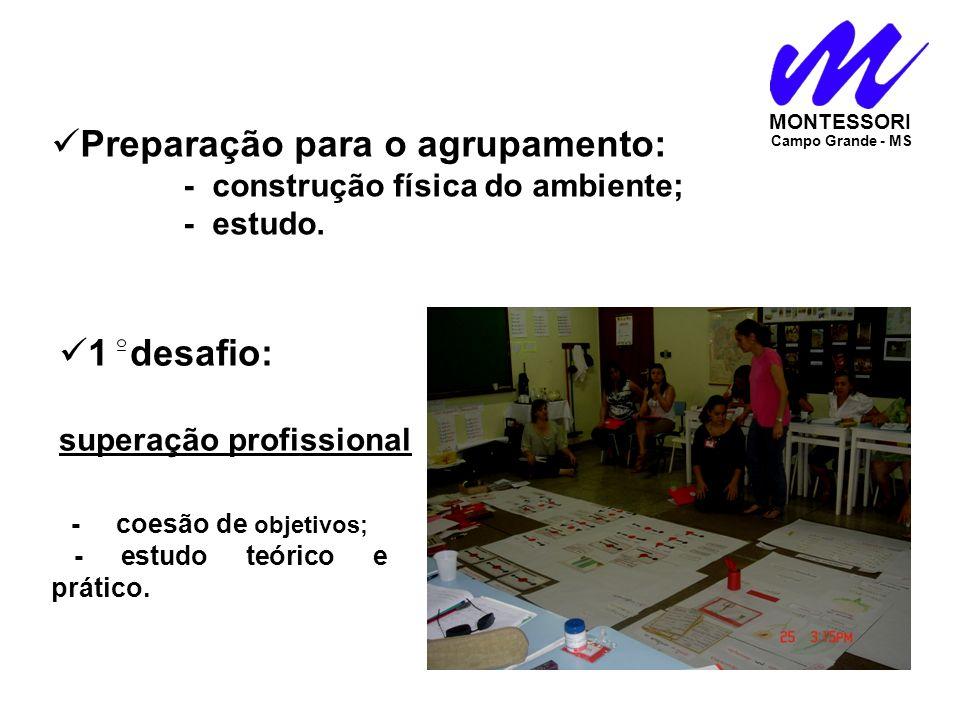 MONTESSORI Campo Grande - MS 1 desafio: superação profissional. Preparação para o agrupamento: - construção física do ambiente; - estudo. - coesão de