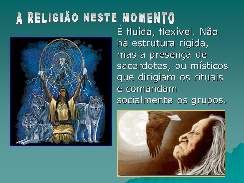 É fluída, flexível. Não há estrutura rígida, mas a presença de sacerdotes, ou místicos que dirigiam os rituais e comandam socialmente os grupos.