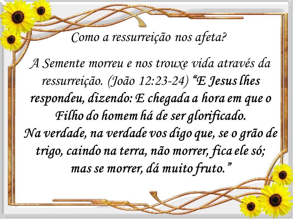 Aprendemos, também, que renovou a esperança dos apóstolos, como também nos dá esperança da ressurreição. (1 Coríntios 15:22-23) Porque, assim como tod