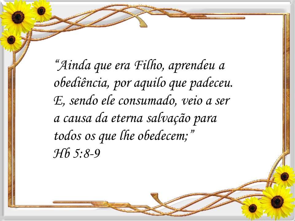 Quando a ressurreição estava completa, aprendemos do escritor de hebreus (Hebreus 5:8-9) que Cristo se tornou perfeito e se tornou autor da vida etern