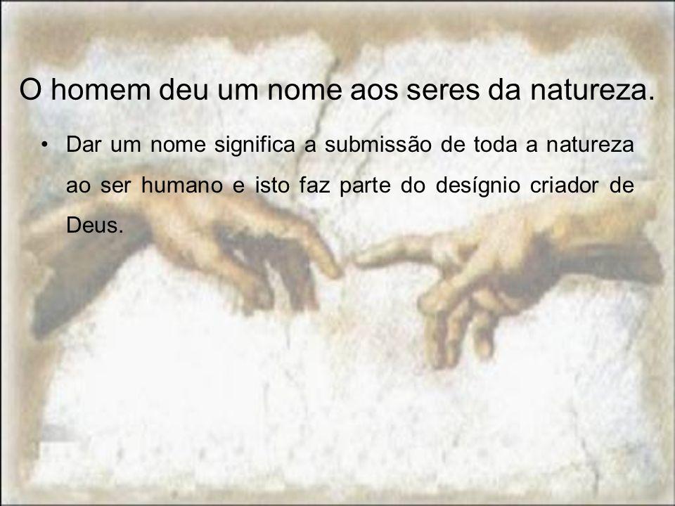 O homem deu um nome aos seres da natureza. Dar um nome significa a submissão de toda a natureza ao ser humano e isto faz parte do desígnio criador de