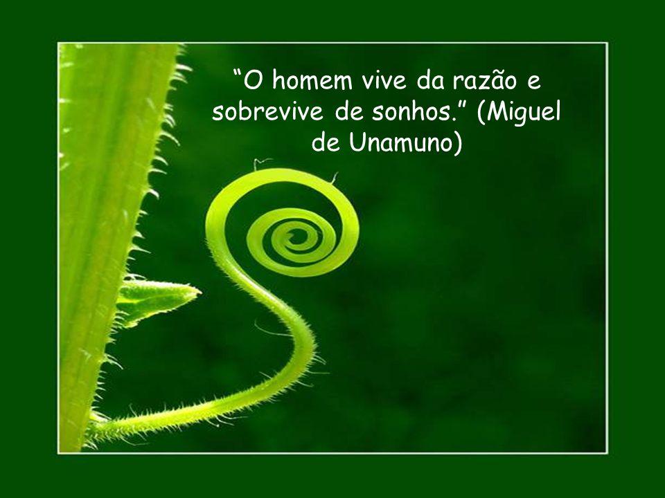 Sonho, logo existo. (August Strindberg, dramaturgo sueco)