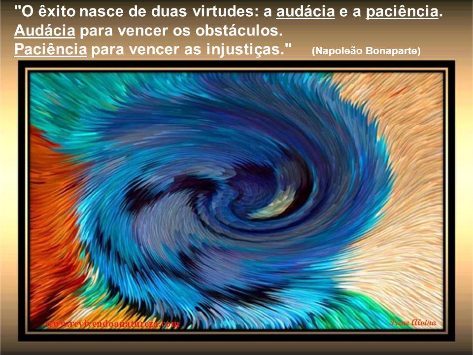 Há dias em que as cores são frias... a vida pede calma, silêncio, pausas... (Pe. Fábio de Melo) www.revivendoanatureza.com Irene Alvina