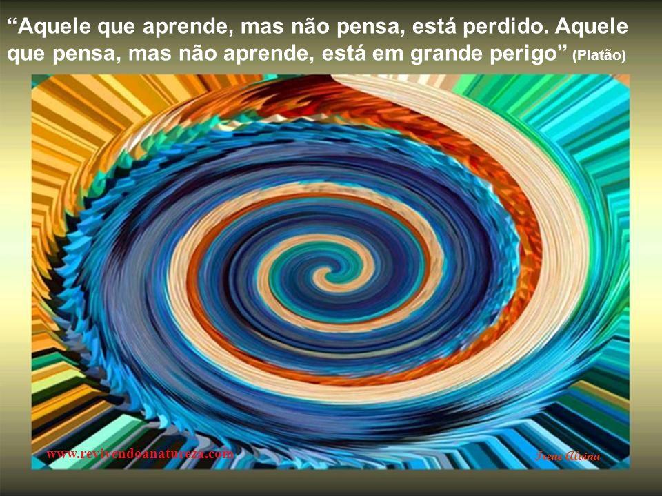 O homem de bem exige tudo de si próprio; o homem medíocre espera tudo dos outros (Confúcio) www.revivendoanatureza.com Irene Alvina