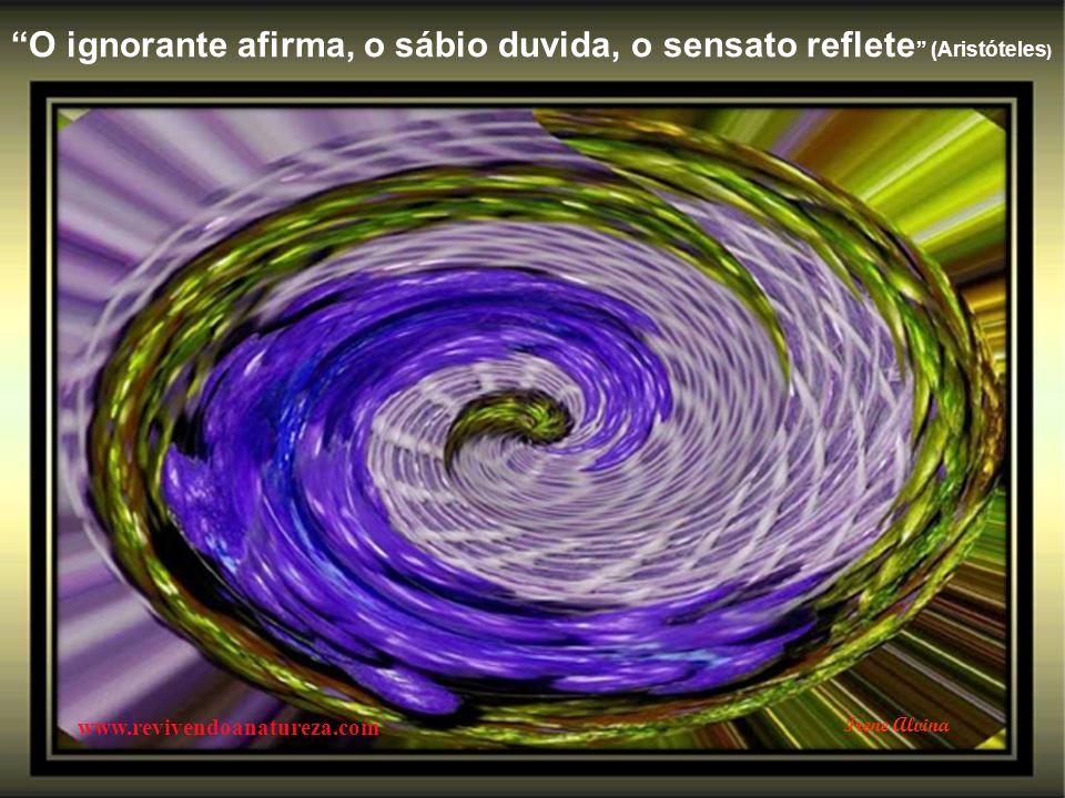 Deus indicou o trabalho como uma benção para o homem, a fim de ocupar- lhe o espírito (Irene Alvina) www.revivendoanatureza.com Irene Alvina