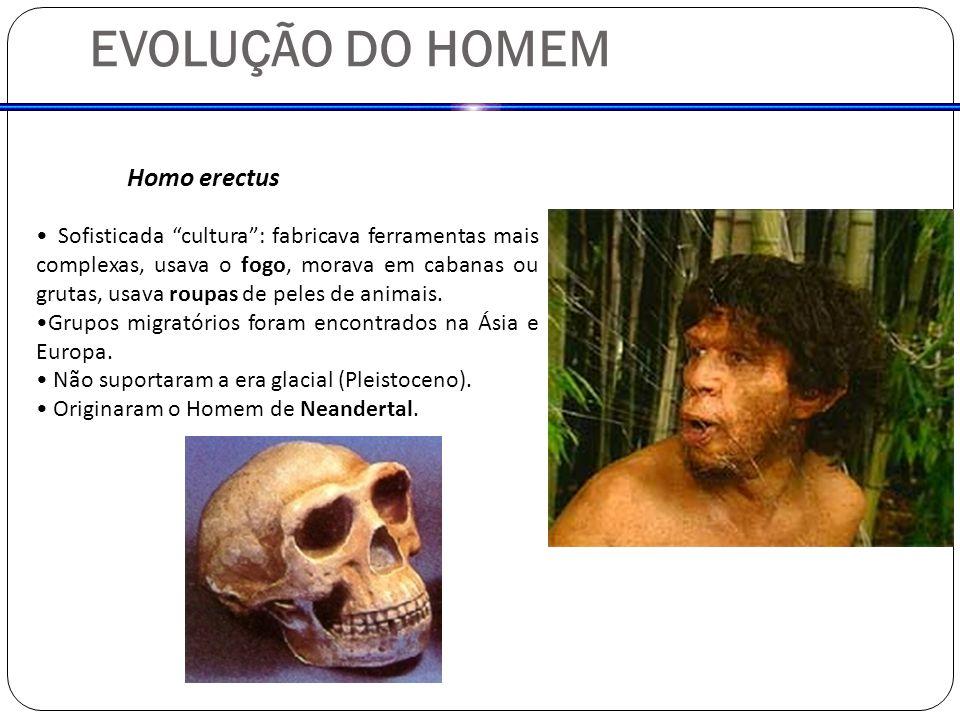 EVOLUÇÃO DO HOMEM Homo erectus Sofisticada cultura: fabricava ferramentas mais complexas, usava o fogo, morava em cabanas ou grutas, usava roupas de p