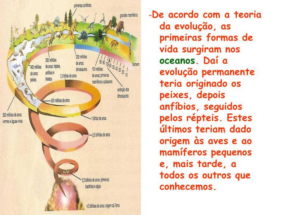 - De acordo com a teoria da evolução, as primeiras formas de vida surgiram nos oceanos.