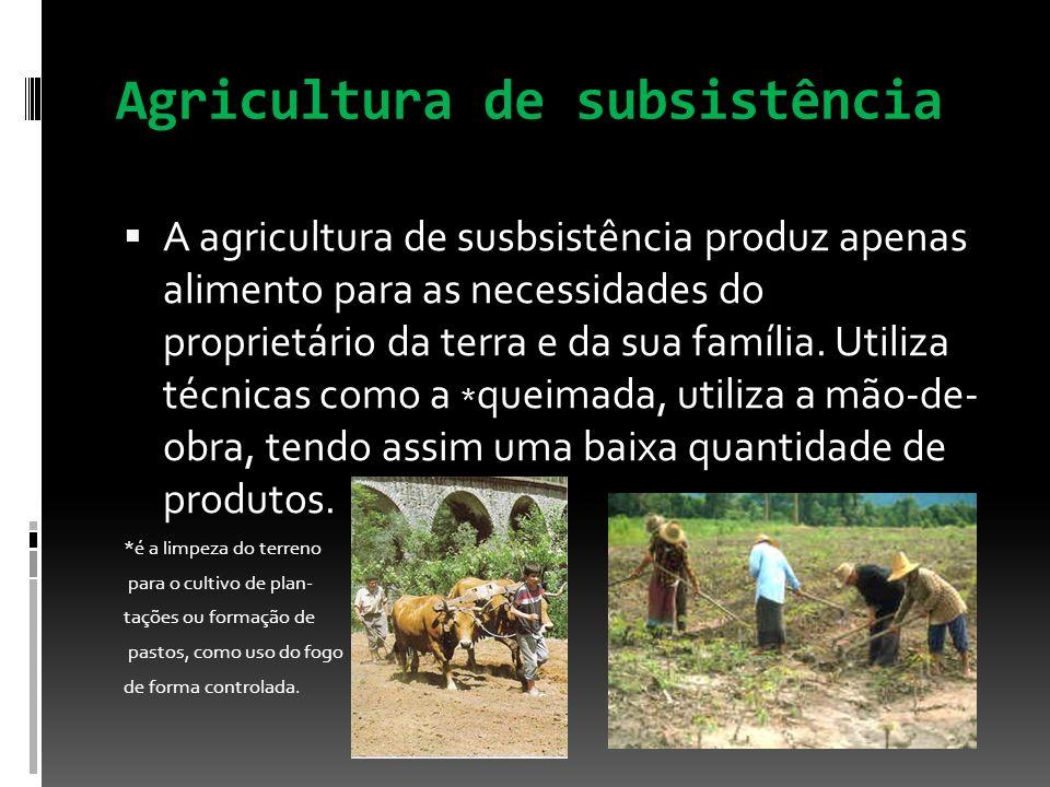 Agricultura de subsistência A agricultura de susbsistência produz apenas alimento para as necessidades do proprietário da terra e da sua família. Util
