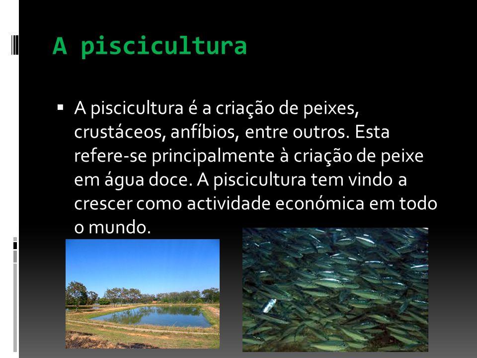 A piscicultura A piscicultura é a criação de peixes, crustáceos, anfíbios, entre outros. Esta refere-se principalmente à criação de peixe em água doce