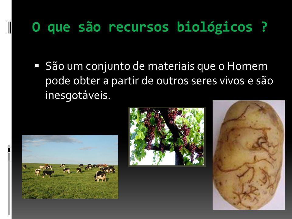 O que são recursos biológicos ? São um conjunto de materiais que o Homem pode obter a partir de outros seres vivos e são inesgotáveis.
