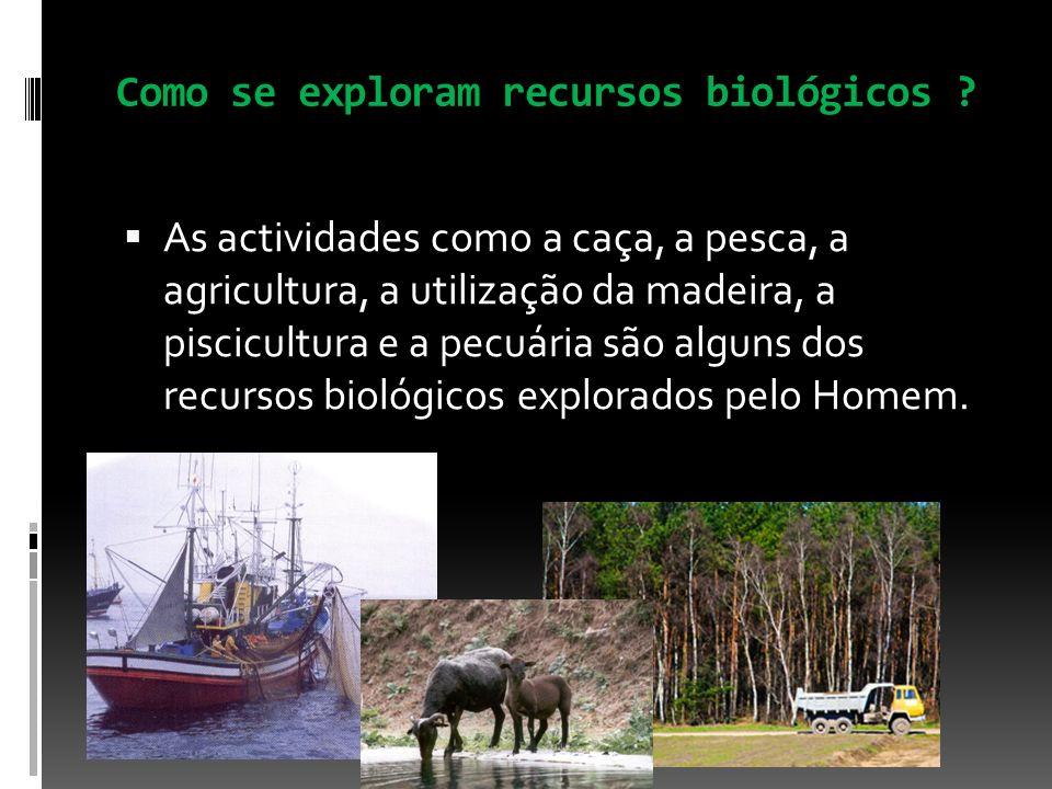 Como se exploram recursos biológicos ? As actividades como a caça, a pesca, a agricultura, a utilização da madeira, a piscicultura e a pecuária são al