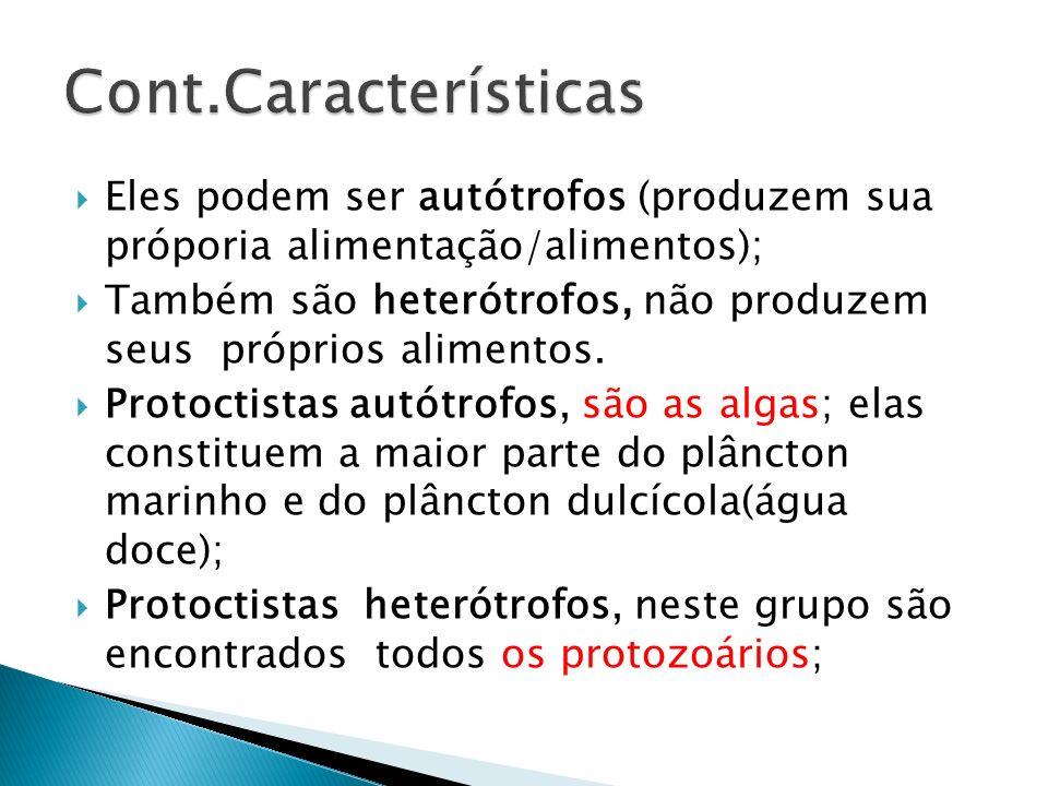 Eles podem ser autótrofos (produzem sua próporia alimentação/alimentos); Também são heterótrofos, não produzem seus próprios alimentos. Protoctistas a