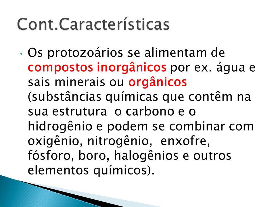 Os protozoários se alimentam de compostos inorgânicos por ex. água e sais minerais ou orgânicos (substâncias químicas que contêm na sua estrutura o ca