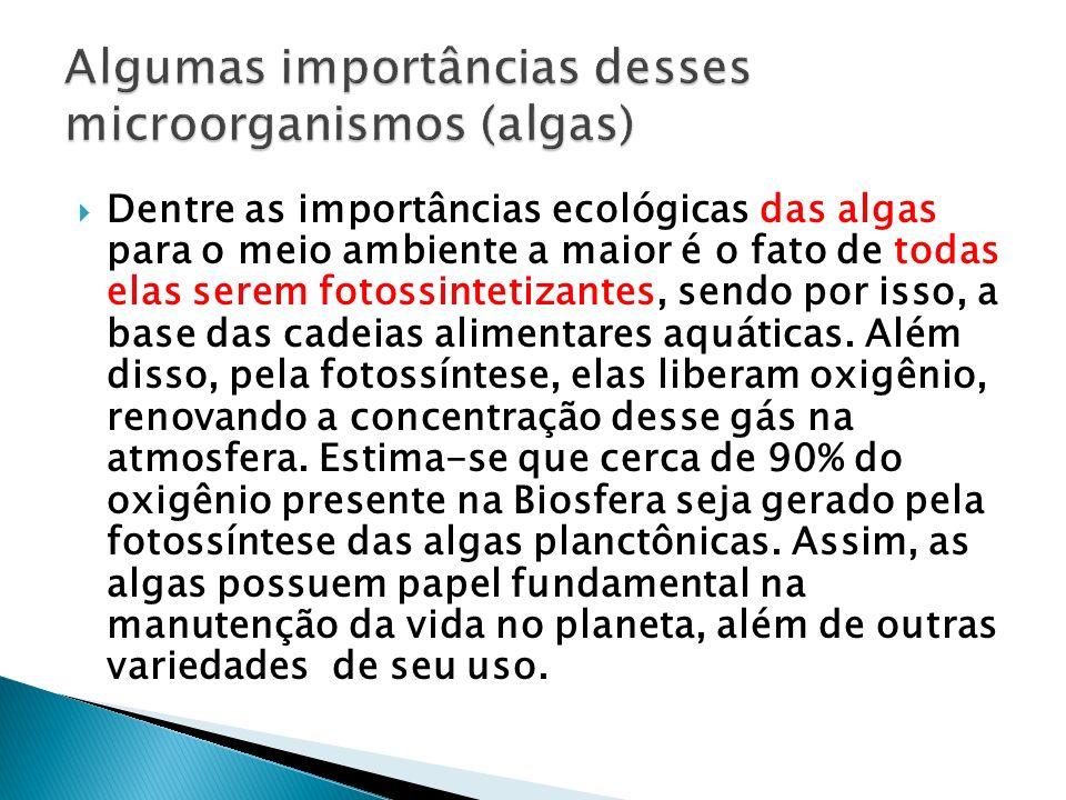 Dentre as importâncias ecológicas das algas para o meio ambiente a maior é o fato de todas elas serem fotossintetizantes, sendo por isso, a base das c