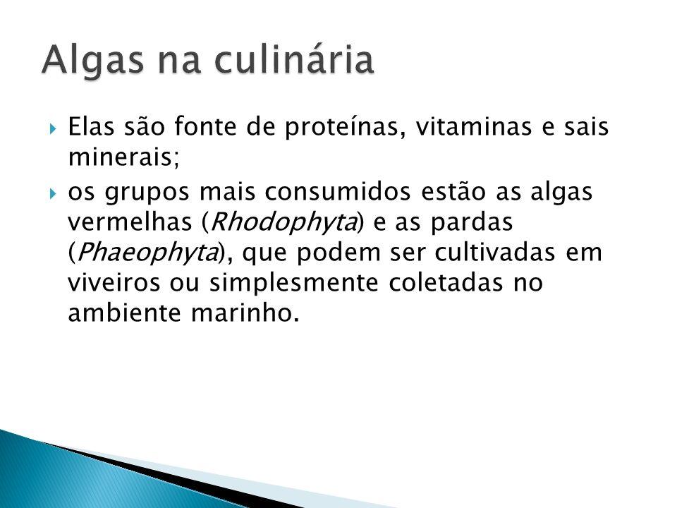Elas são fonte de proteínas, vitaminas e sais minerais; os grupos mais consumidos estão as algas vermelhas (Rhodophyta) e as pardas (Phaeophyta), que